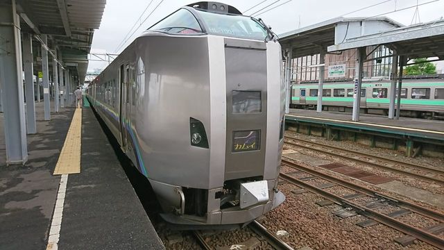 DSC_7306.JPG